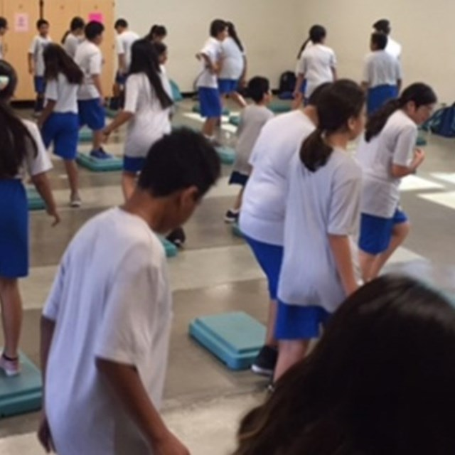 Wildcats have fun during their step-aerobics unit in P.E.